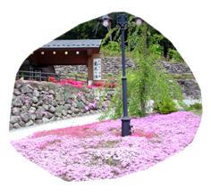 みかえりの郷イメージ画像